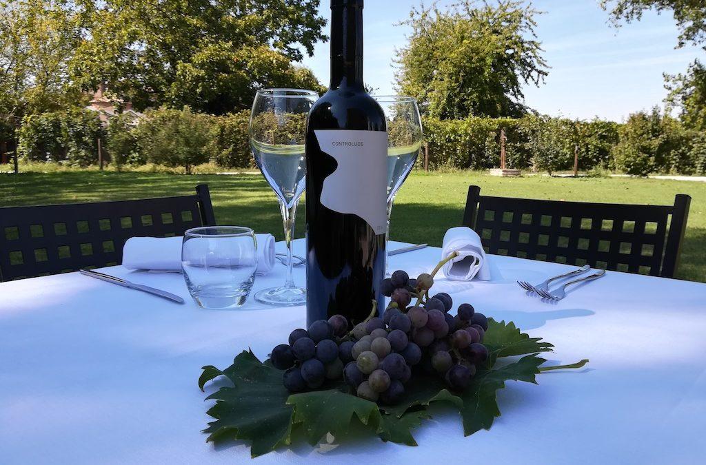 Controluce, un vino rosso raro ed importante dai Colli Bolognesi